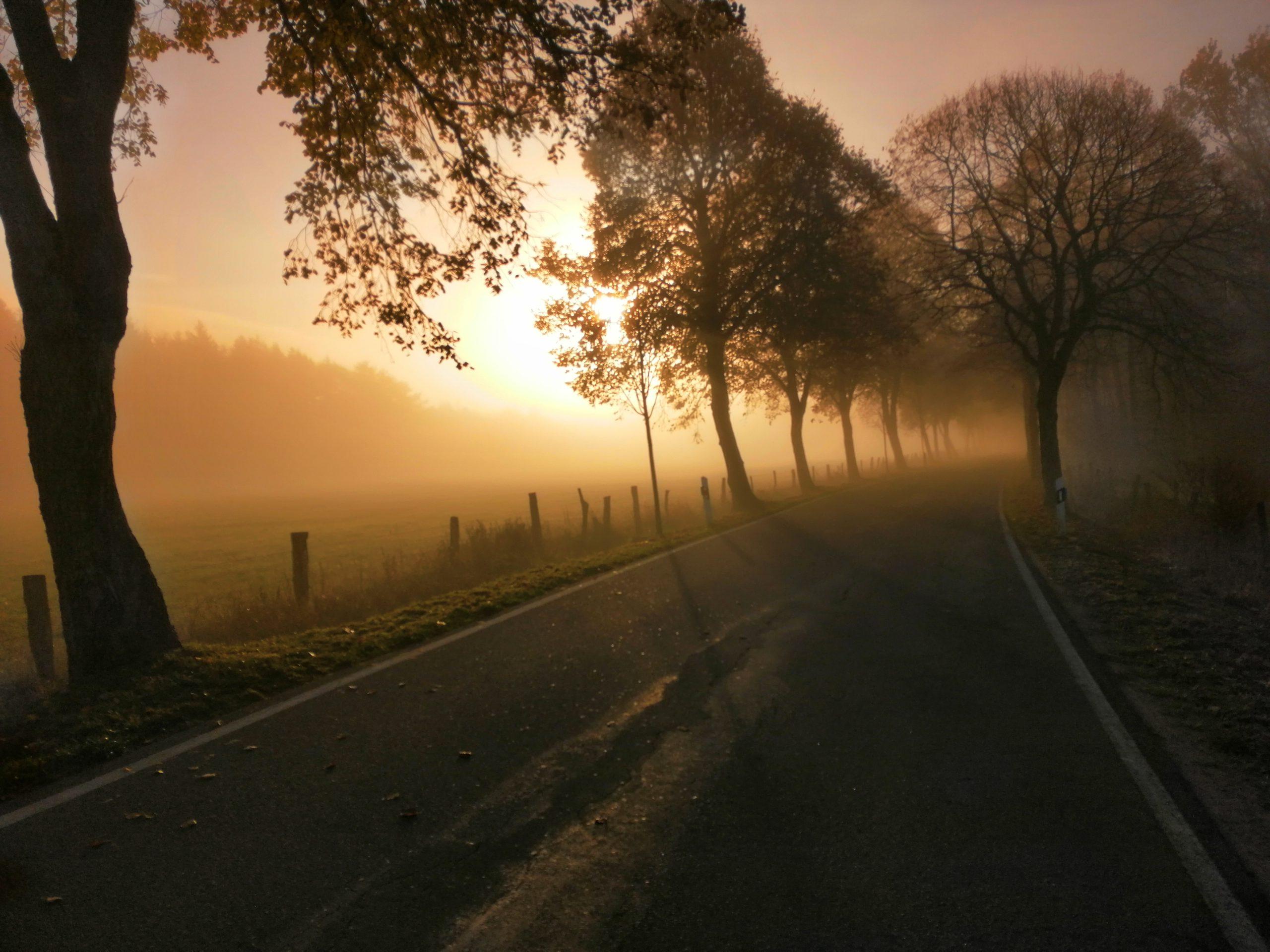 Morgenstimmung im Naturpark Aukrug